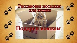 Распаковка посылки для кошки. Подарки кошкам. Cat unboxing Glorybox