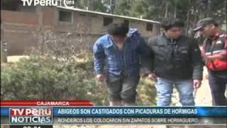 Ladrones recibieron peculiar castigo en Cajamarca: picaduras de hormigas