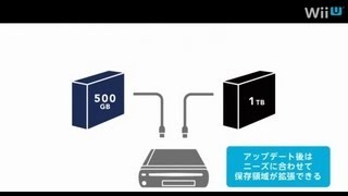 Wii U: Storage Talk Part 2 The Denial