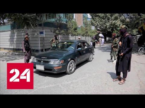 Страшная кара Пентагона обернулась одним беспилотником - Россия 24 - Видео онлайн