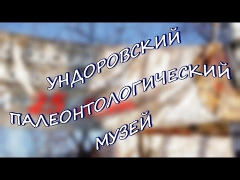 Правдивые истории Дмитрия Илюшина Ундоровский палеонтологический музей