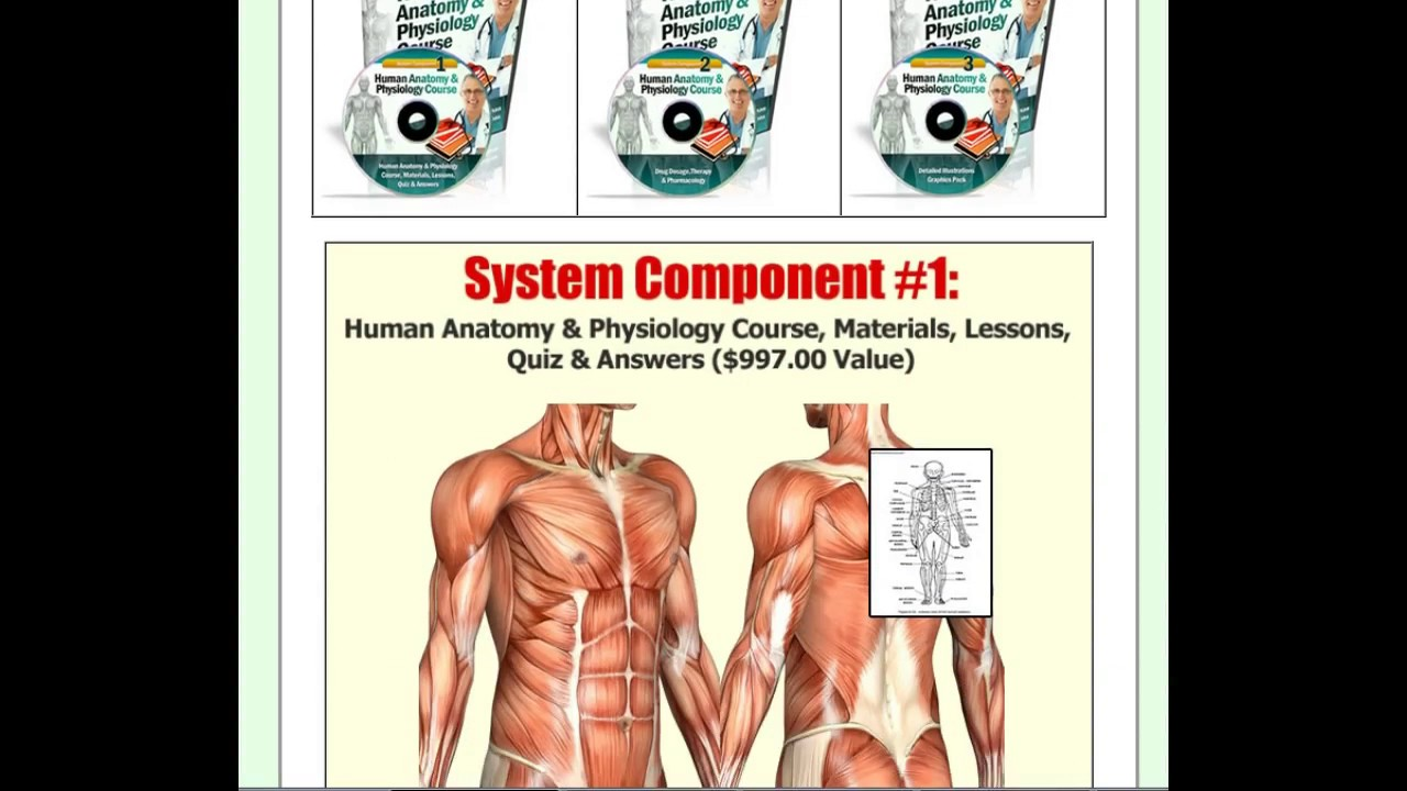 Human Anatomy & Physiology Study Course pdf Review - Human Anatomy ...