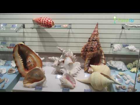 수산과학관 Fisheries Science Museum