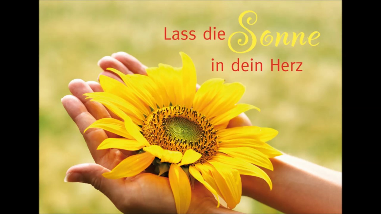 Lass Die Sonne Rein Laß Die Sonne In Dein Herz By Maxim Music - Youtube