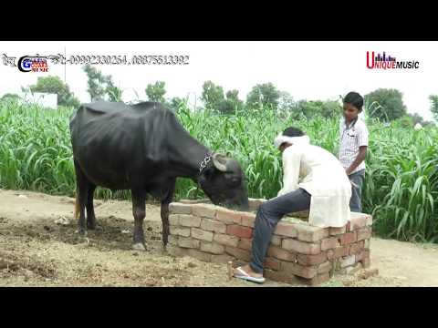 हेज्ली खोली गी धार -//NEW BHAJAN TERA BHAGAT BULAWE // rs....