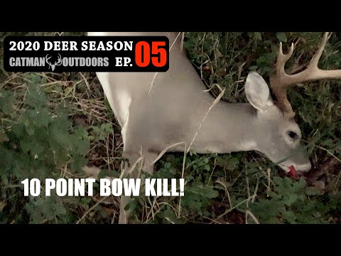15 Yard Shot! Bowhunting Public Land – 2020 Deer Season Ep 05