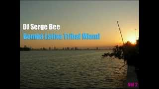 TRIBAL/LATIN/TECH MIX by DJ SERGE BEE - BOMBA MIAMI PART 2 (2009-2012)