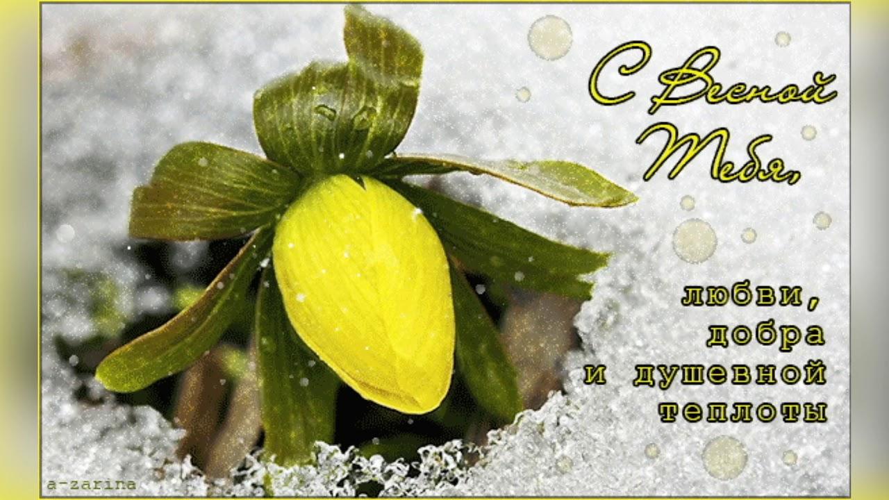 Гифы с первым днем весны любимый, евро открытки открытка