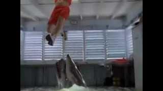 Trailer e filme - Tubarão de Malibu