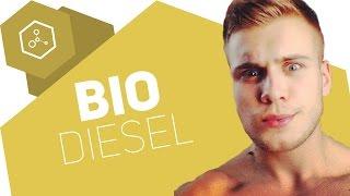 Was ist Biodiesel?!