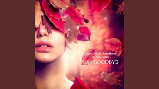 Say Goodbye (feat. Sol Codas)