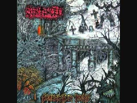 Sentenced - Rot to Dead