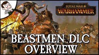 CALL OF THE BEASTMEN! Total War WARHAMMER Beastmen DLC Overview!