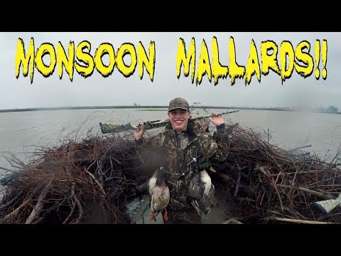DUCK HUNTING In A MONSOON!!