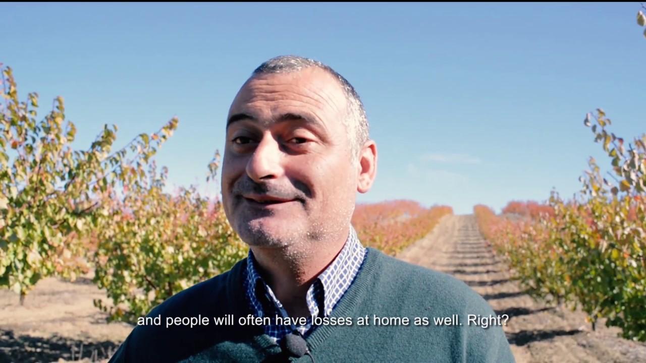 Gente bonita produz Fruta Feia: #17 Mario Rodrigues (Frutalmente)