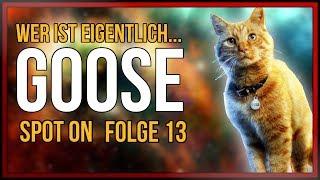 SPOT ON: Wer ist eigentlich GOOSE (Captain Marvels Katze) | [Marvel Cinematic Universe]