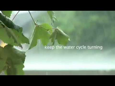 "The Ramsar video: ""Wetlands: keeping our planet alive and well"""