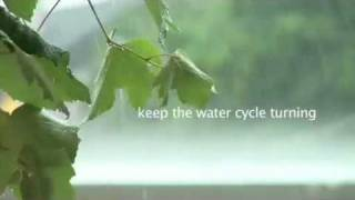 """The Ramsar video: """"Wetlands: keeping our planet alive and well"""""""