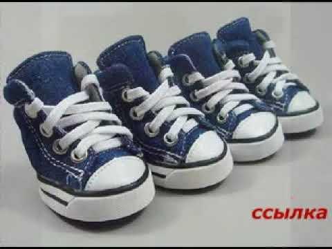 Ru предлагает распродажу обуви дешево от известных производителей, созданную на основе актуальных модных решений. Если вы желаете купить обувь недорого, то интернет-магазин vrasmer предлагает вам распродажу обуви в москве и приветствует на страницах нашего сайта двадцать четыре.