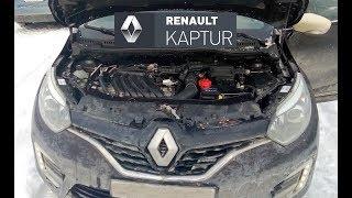 Renault Kaptur: какие технические жидкости заливать (доливать) в автомобиль