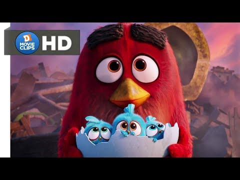 The Angry Birds Movie Hindi (14/14) Ending Scene MovieClips