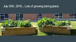 West Kent Elementary School, 2016 School Garden Grant