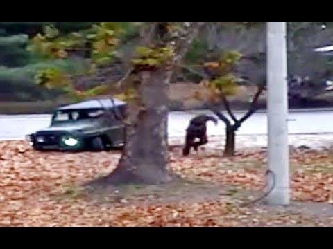 [경향신문] JSA 귀순 병사 cctv 영상 공개 (풀버전)