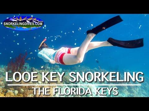 Snorkeling Looe Key | Florida Keys