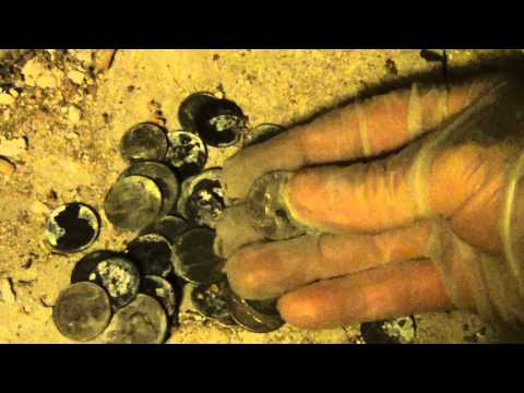 Contaminated Coins due to Salt water of Katrina flooding need radical cleaning