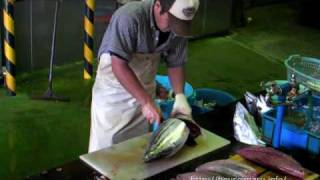早い鰹のさばき方 how to clean a bonito quickly
