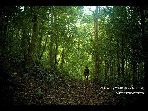 Chimmony Wildlife Sanctuary - trek(Dec 2015)