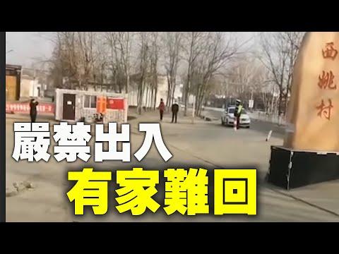 上不了厕所自己想办法!石家庄藁城拆封条被视为破坏防疫 拘留14天(图)