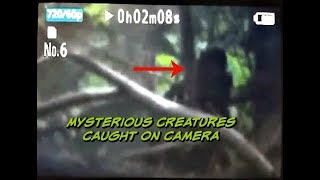 Mysterious Creatures Caught on Camera Trailer | Tennessee Woods LIVE NOV 8