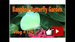 Bangkok Butterfly & Insectarium Bangkok Thailand