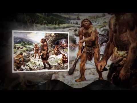 Когда появился первый человек на Земле