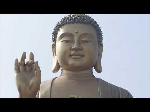Mindfulness meditation class 6, loving kindness