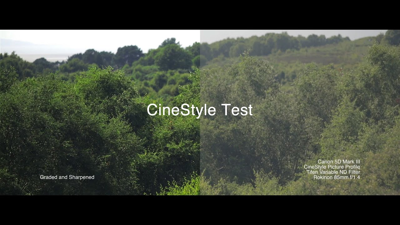 Canon 5D Mark III CineStyle Grade Comparison - An Afternoon on Heswall  Dales (Watch at 1080p)