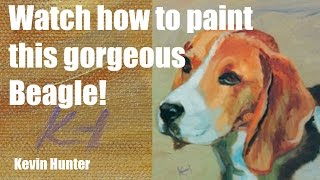 Oil Painting: Time-lapse Speed Painting Of A Beagle By Kevin Hunter