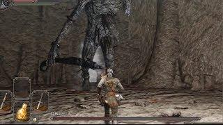 朽ちた巨人の森にいる最初のBOSS戦:最後の巨人です。