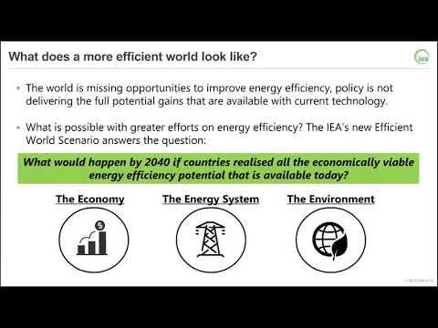 The International Energy Agency's Efficient World Scenario (