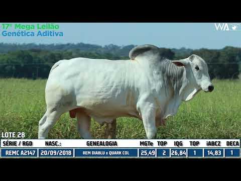 LOTE 28 - DUPLO - REM 10214, REMC A 2147 - 17º Mega Leilão Genética Aditiva 2020