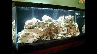 aqueon modular led aquarium light