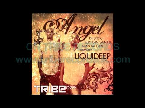 Angel - Liquideep (incl.Remixes)