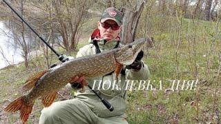 Всегда берите его с собой Рыбалка на щуку Спиннинг