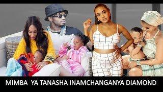 DIAMOND Kwa Hili Mimba Ya TANASHA Chanzo, ZARI NA HAMISSA WAMESAHAULIKA