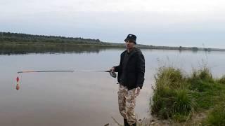 Ловля подлещика на закидушки(донки). Река Волга