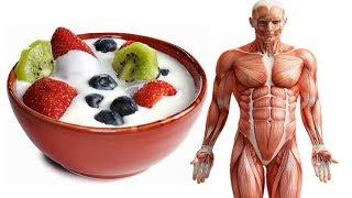 6 Amazing Reasons You Should Eat A Cup Of Greek Yogurt Everyday