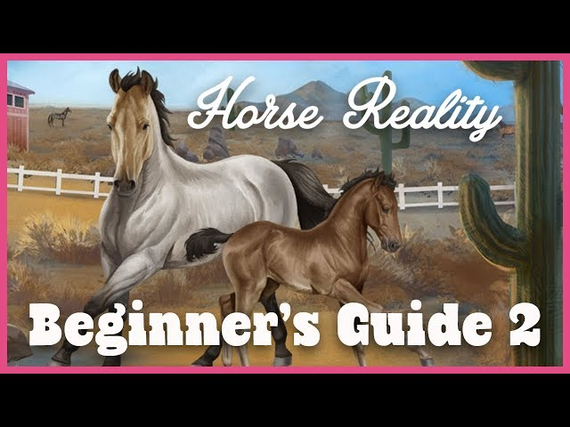 Horse Reality Beginner's Guide - Let's Play #2