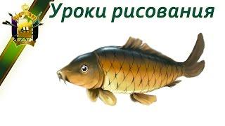 Как научиться рисовать рыбу.  Урок рисования карпа.  Fish(Учимся рисования пошагово: http://color.artatac.ru/risunokbasis.html Уроки рисования: http://artatac.ru/uroki_risovaniia/perspektiva/kak-pravilno-risovat.html..., 2014-08-15T08:32:09.000Z)