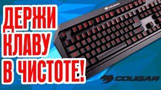 МОЕМ КЛАВИАТУРУ! | Обзор игровой клавиатуры Cougar 450K!